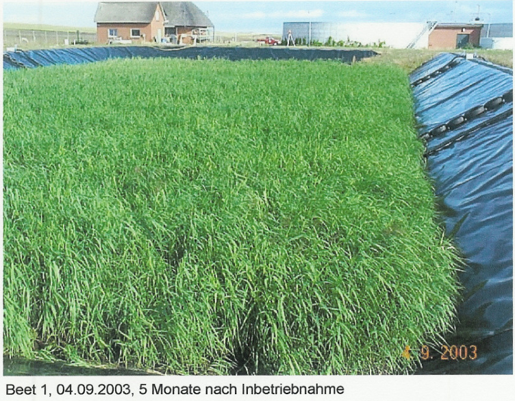 Amrum: EKO PLANT ANLAGE